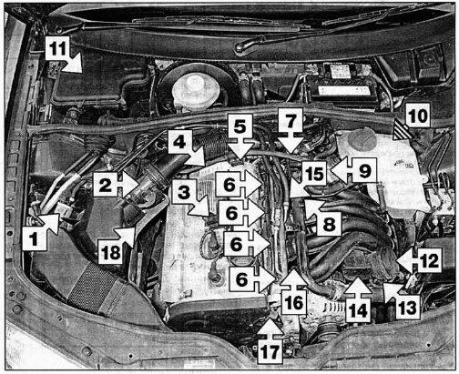 Проверка системы улавливания паров топлива Volkswagen Passat B5, 2000 - 2005